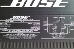 Bose PAM-5 Powered Acoustimass System - Image 2